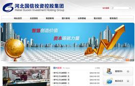 河北国信投资控股集团
