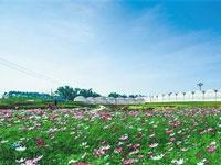 与河北省生态文明建设促进会合作,提供单位官网网站改版工作